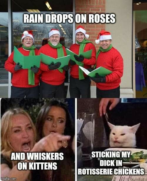 Raindrops On Roses And Whiskers On Kittens Anne Of Green Gables