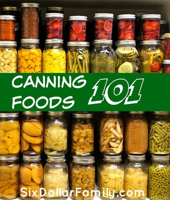 Learning to can your own foods doesn't have to be scary! This canning 101 post walks you through most of the basics that you'll need to know to get started!