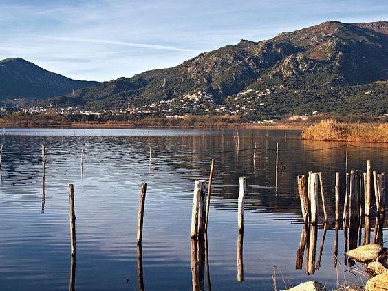 Corsica - Etangs de Corse -  Réserve naturelle de Corse - L'étang de Biguglia (ou de Chiurlino, en corse stagnu di Chjurlinu) est une lagune corse située au sud de Bastia, sur le fleuve Bevinco.