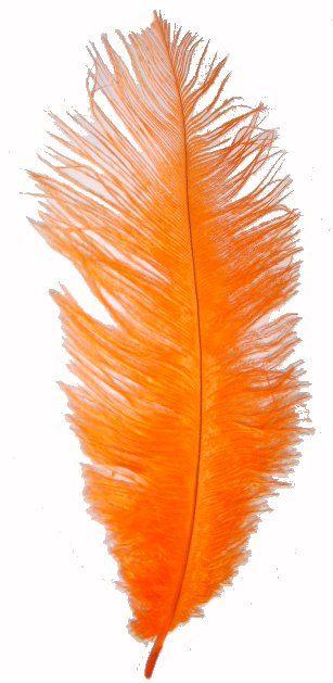 Orange                                                                                                                                                      More: