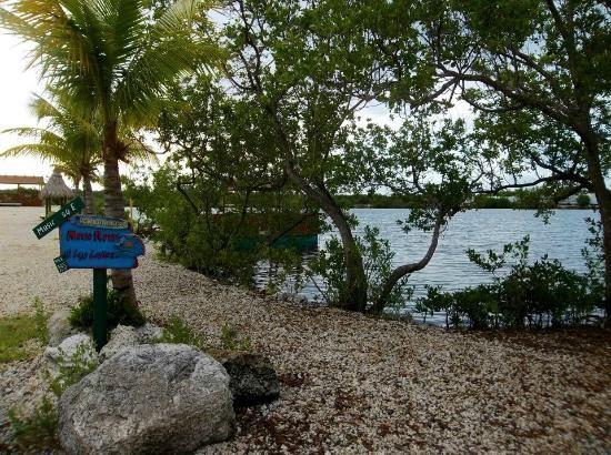 Lazy Lakes Rv Resort D Resorts And Lakes