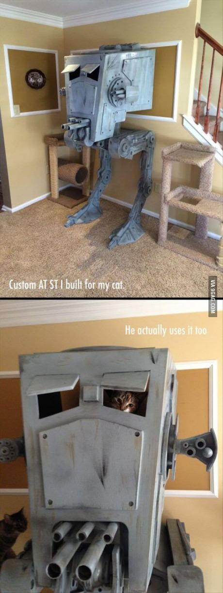 Cat playhouse level: Star Wars