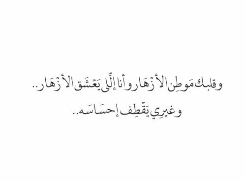 Pin By Halema Almansoori On لها Calligraphy Quotes Love Pretty Quotes Queen Quotes
