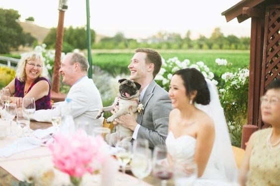 Real Weddings Hochzeitsreportagen | miss solution Bildergalerie - Outdoor-Hochzeit von Adrienne Gunde Photography // miss solution