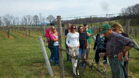 Come to the Country. linger in the barn, watch for wildlife in the spacious pasture, marvel at the beautiful mountains of the Blue Ridge, and enjoy the fruits of the vineyard.