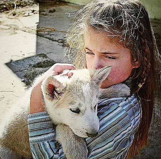 Seriously! A pet wolf! Coolest thing!