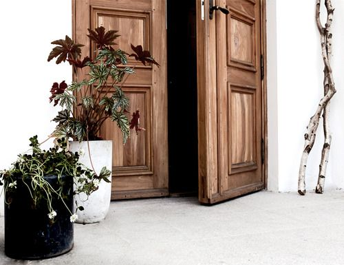 White walls, natural wood door, planters and birch