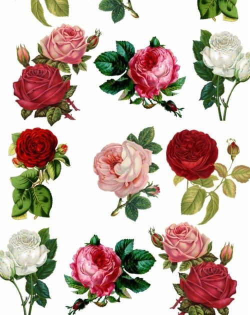 26 I Phone Wallpaper Rose List Of Free Rose Wallpapers Download Itl Cat 3d Rose Valenti In 2020 Wallpaper Iphone Roses Gold Wallpaper Iphone Flower Iphone Wallpaper