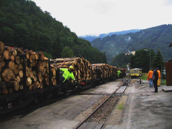 Ybbstalbahn Güterzug 19.07.2005- 2009/10 Von der Schiene auf die Straße, umgebracht von einer verkehrten Verkehrspolitik von Rot und Schwarz