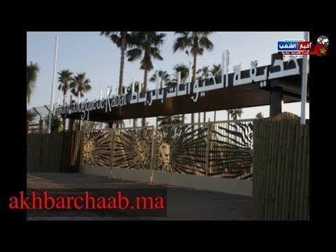 الرباط نزهة رائعة باكبر حديقة للحيوانات بالمغرب مع موسيقى غاية في الر Outdoor Structures Outdoor Pergola