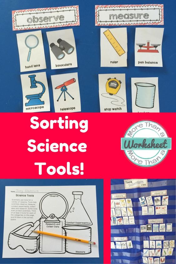 Use these cards to sort science tools into different categories: observe, measure, experiment, collect data, and protect. There are also several fun vocabulary building class game ideas included. More Than a Worksheet $