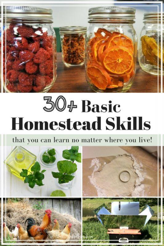 30 Basic Homestead Skills To Start Learning Today Urban