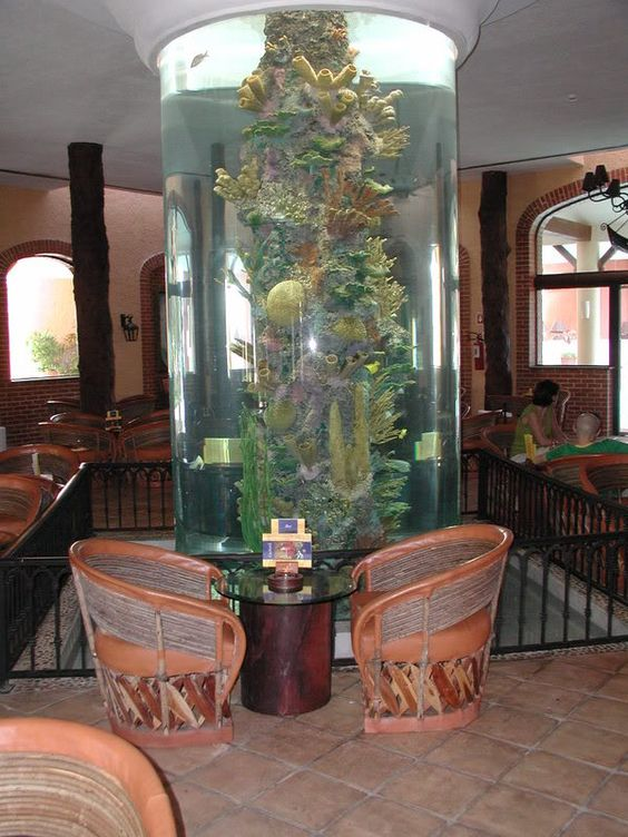 Vertical coral reef aquarium fish tank aquariums Beautiful aquariums for home