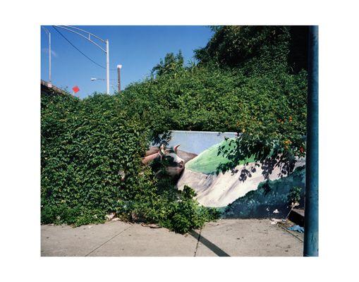 William Greiner - Bull Mural    New Orleans, 1999