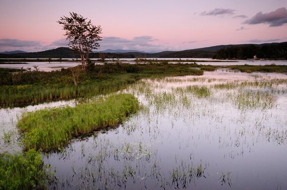 Dawn, Tupper Lake NY