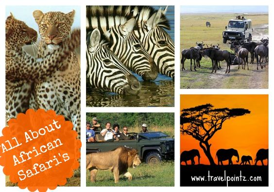 Is an African Safari Right For Me