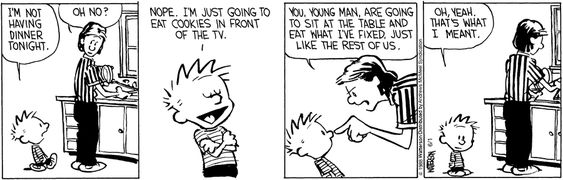 Calvin and Hobbes by Bill Watterson for Jun 1 2018