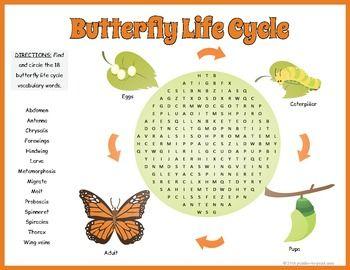 Butterflies Search - mrnussbaum.com