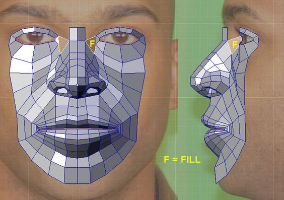 CGArena : Detailed Head Modeling