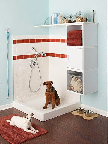 Dog shower in the garage.  That's awesome! - - Might work for little boys too ....