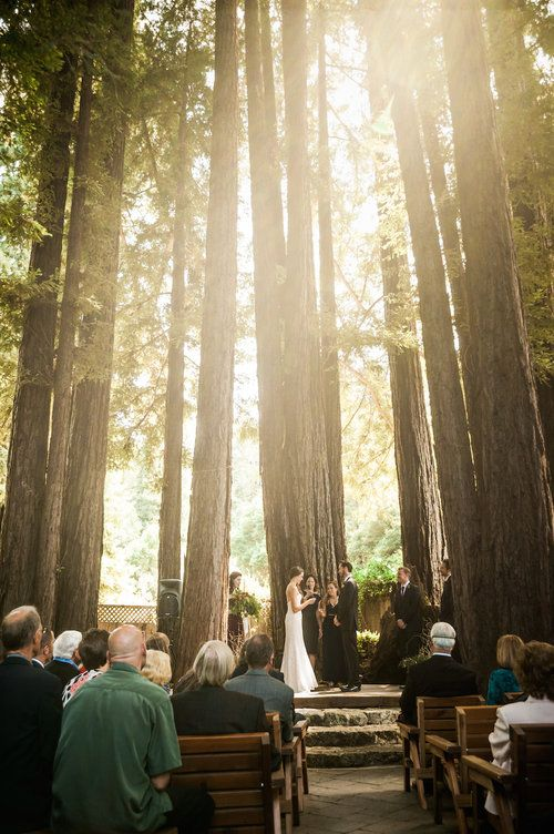 If Redwood Forests Are Your Thing Felton Guild Is Your Venue Located In Felton Ca In Beautiful Santa Cruz County Felton Wedding Venues Event Hall