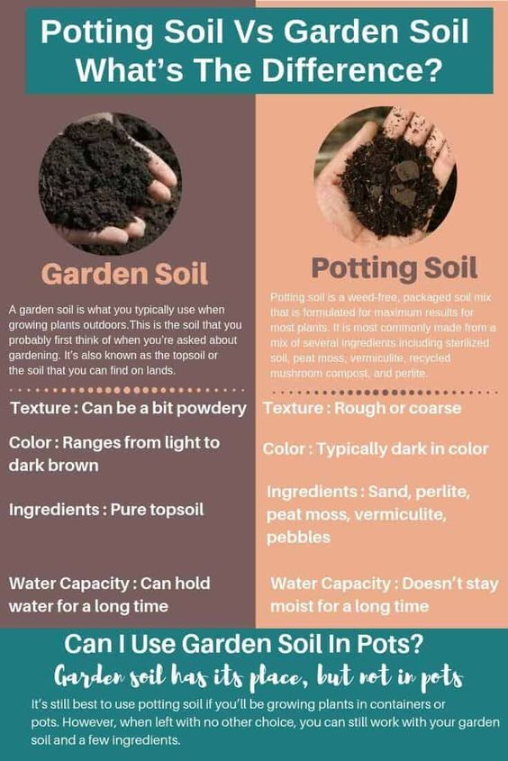 If you're thinking of the differences between potting soil vs garden soil , it may already be a bit confusing with if is topsoil the same as potting soil and when to use each.  ......The answer to this question is, no.  So, What's The Difference Between Topsoil And Potting Soil? Garden soil and potting mix may sound like the same to you, but you should know the difference.  Knowing more about these two can help you decide which one will work best with your gardening setup and the types of plants