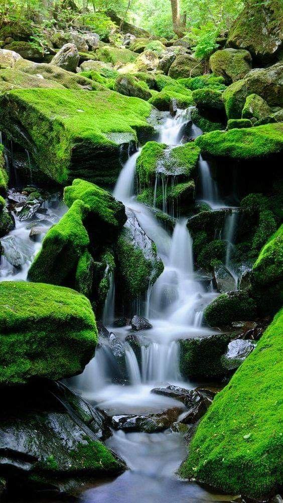 Pin By Maryanne On Waterfalls Beautiful Waterfalls Landscape Nature Photography