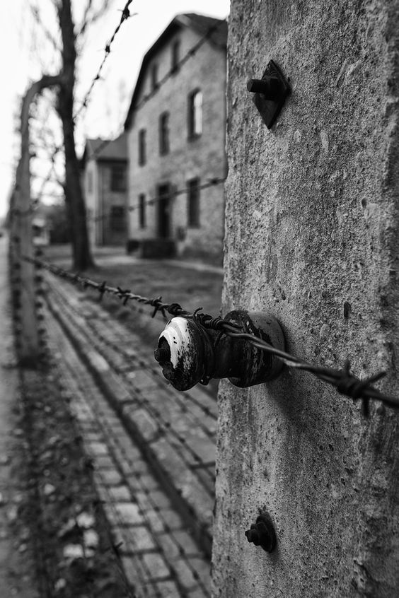 Scenes from Auschwitz The sadest place to visit.