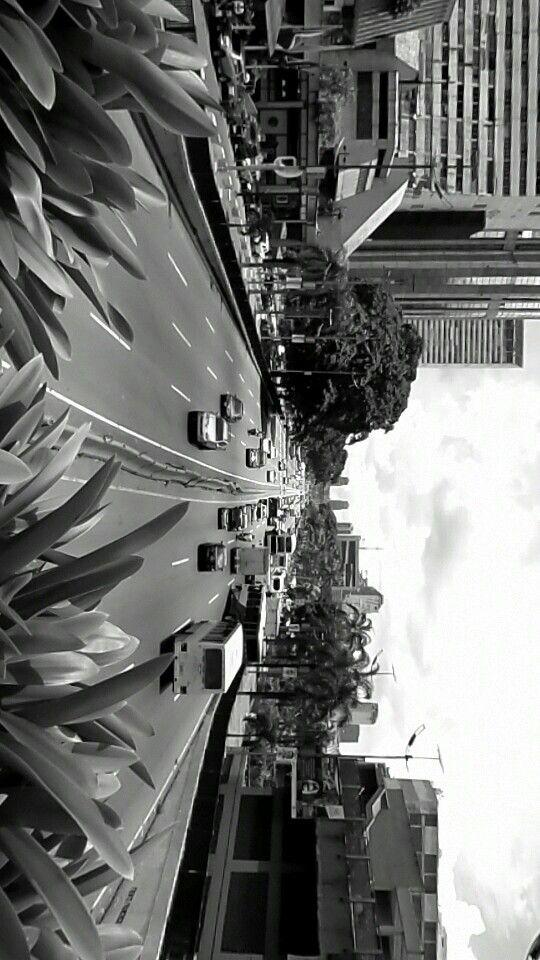 Av Bolivar - Caracas