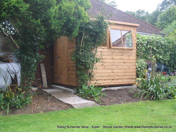 Garden Sheds Ripley deluxe pent 8x6, extra windows. | ripley nurseries. sheds, garden