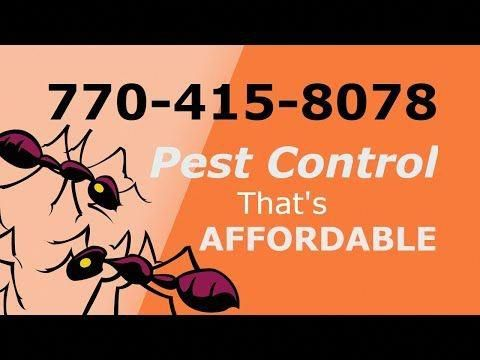 Pesttreatment Pestcontrol Doityourselfpestcontrol Pestcontrolservices Pestrepeller Preventivepestcontrol Homepestcontrol Bes Termite Control Pest Control Drywood Termites