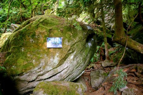 Where Was Twilight Filmed twilight filming locations | oh, the places i want to go