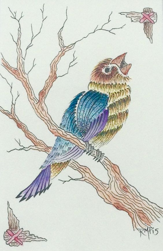 Song Bird - Natural History Botanical - Ink/Watercolor painting by Rachel M Post