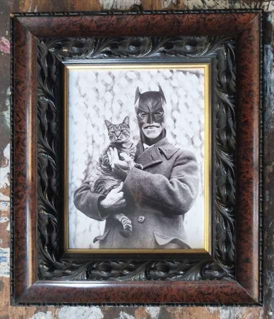 Batman e il gatto