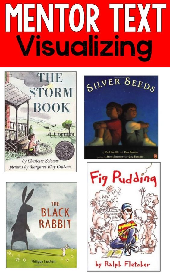 Reading Mentor Texts-Great books for teaching students how to visualize as they read! These visualizing books can help with comprehension strategies!