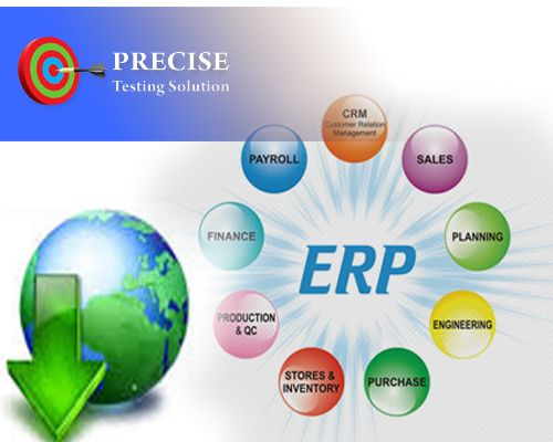 Image result for ERP domain images