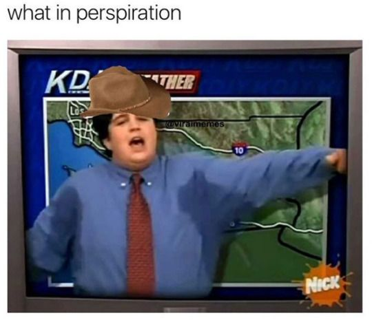 'Wot in tarnation?' cowboy hat memes are actually HILARIOUS: