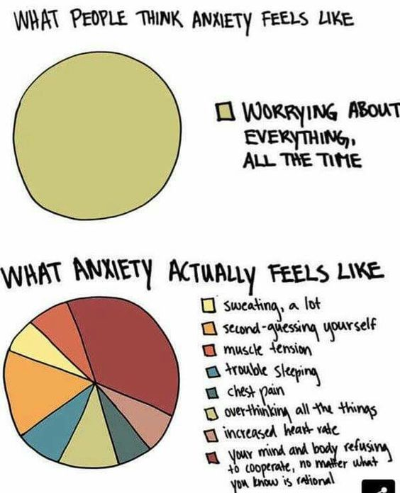 Anxiety Pie Chart  The Tough Stuff    Pie Charts