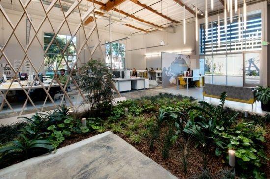Aménager un jardin intérieur: 105 idées de design original