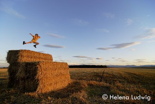 Tom on hay bales by Helena Ludwig