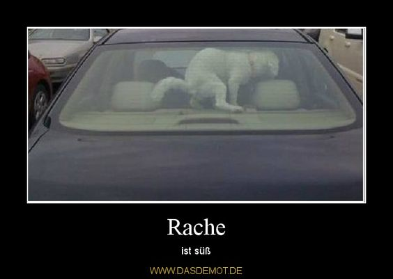 Rache – ist süß one of my favourite sayings. Never forgot it. And wondering why revenge is on my mind today..