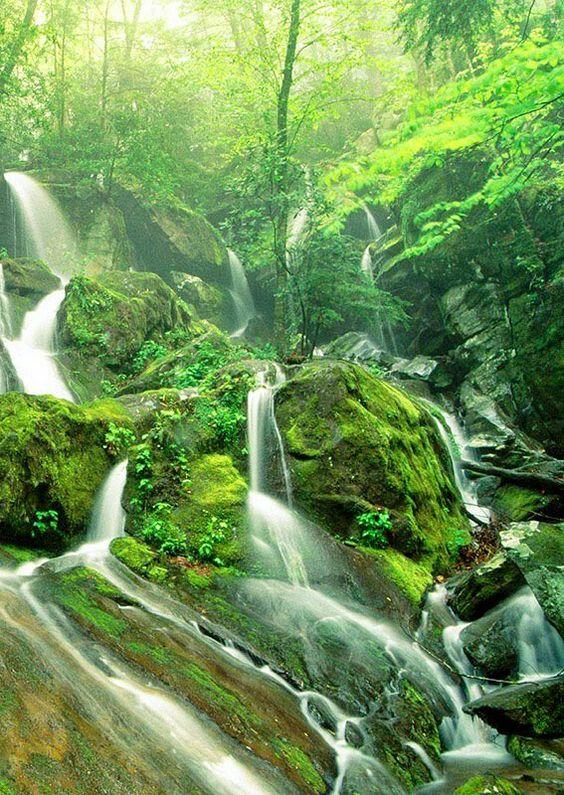 Increibles cascadas! Hermosas♡