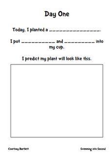 plant observation book pages plants animals pinterest book pages plants and book. Black Bedroom Furniture Sets. Home Design Ideas