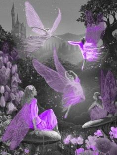 Purple Fairies art fantasy purple angel wings fairy