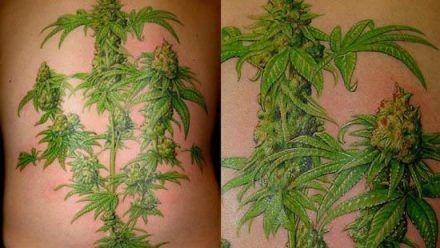 Tatuagem vs. Concurso Público: Exclusão de candidato devido a tatuagem depende de desenho