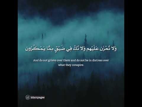 آيات قرآنية تريح القلب Youtube Simple Photo Grieve Photo