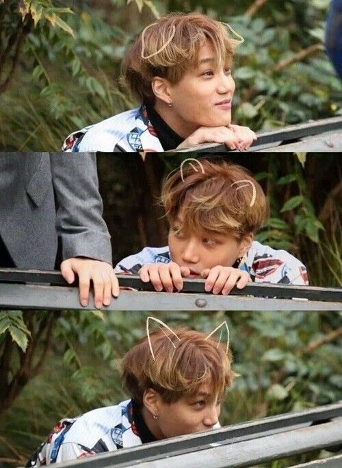 Excuse you, Kai, who said you could be that adorable?? | EXO