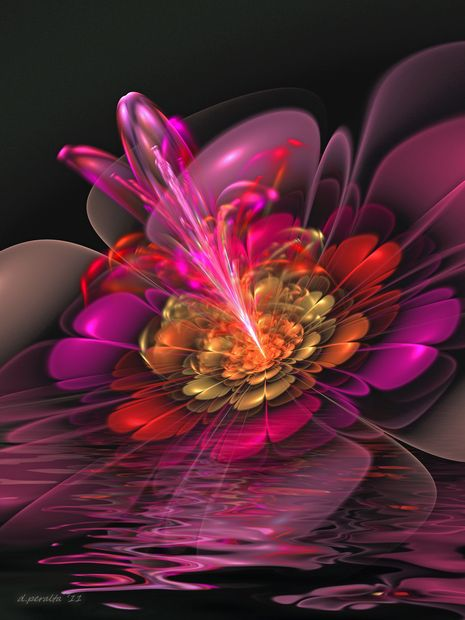 Fractal images argentina and heart on pinterest for Flowers that mean life