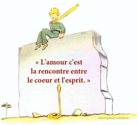 Le petit prince de St Exupéry 4a20034a744a42612d21f16f547c5646