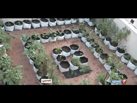 Want To Be An Expert In Terrace Gardening Poovali News7 Tamil Garden Pots Gardening Tips Garden